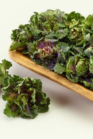 Kalerosse- nowe warzywo w Polsce + przepis